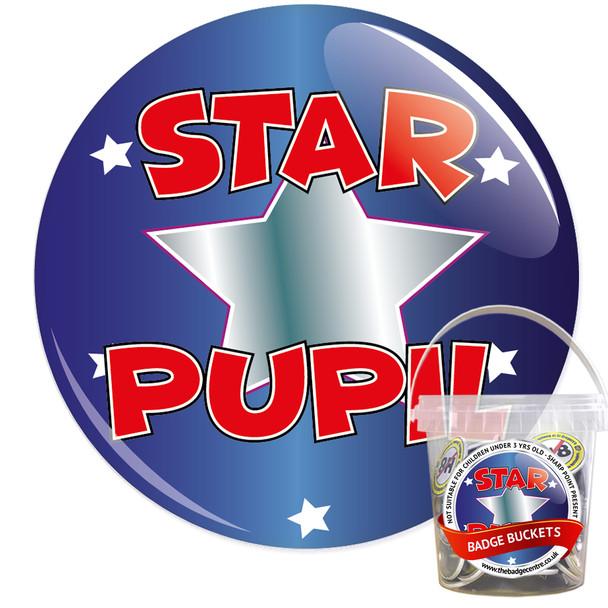Pack of School Star Pupil Badges - Badge Bucket 14