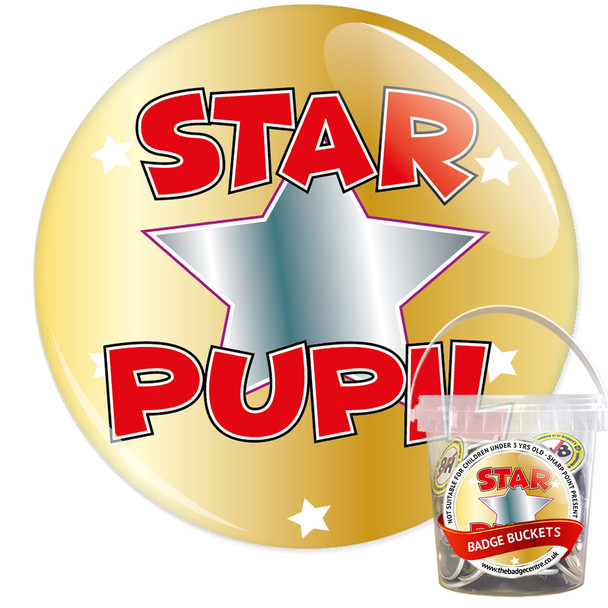Pack of School Star Pupil Badges - Badge Bucket 15