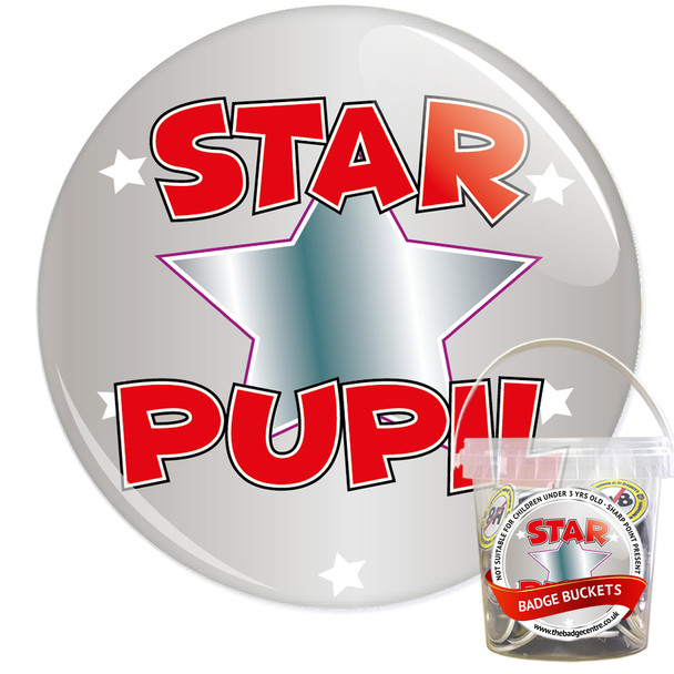Pack of School Star Pupil Badges - Badge Bucket 16