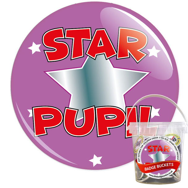 Pack of School Star Pupil Badges - Badge Bucket 18