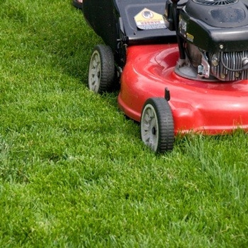 Golden Rule Lawn Care - MONTHLY MAINTENANCE PLAN