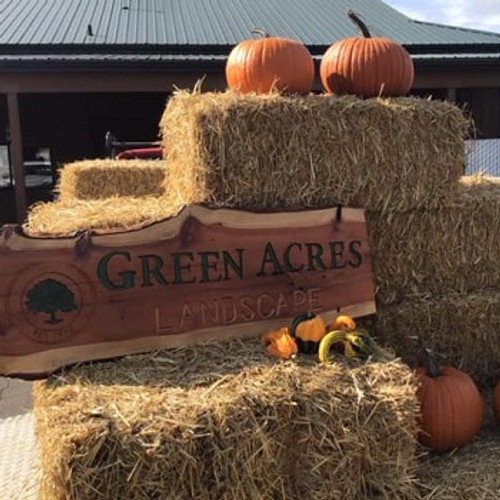 Green Acres Landscape Nursery - Christmas Trees