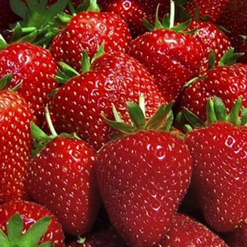 West Salem Rotary Frozen Berries - 10lb Bucket
