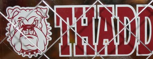Thaddeus Stevens College Window Cling