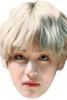 V - BTS Korean Music Star K POP - Music Star Fancy Dress Cardboard Celebrity Face Mask