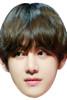 KIM TAEHYUNG- BTS Korean Music Star K POP - Music Star Fancy Dress Cardboard Celebrity Face Mask