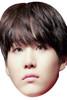 SUGA - BTS Korean Music Star K POP - Music Star Fancy Dress Cardboard Celebrity Face Mask