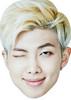 RM Rap Master - BTS Korean Music Star K POP - Music Star Fancy Dress Cardboard Celebrity Face Mask