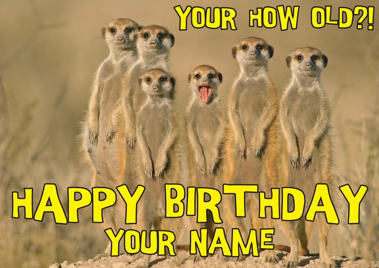 PERSONALISED MEERKAT A5 BIRTHDAY CARD ANY NAME AGE OR GREETING