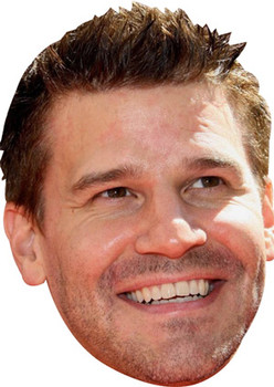 David Boreanaz Celebrity Face Mask
