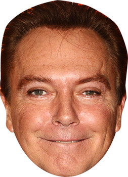 David Cassidy Music celebrity Party Face Fancy Dress