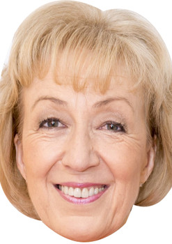 Andrea leadsom prime uk minister politician celebrity party face fancy dress