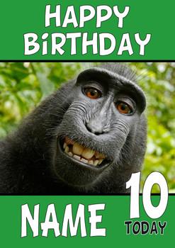 Happy Birthday Monkey Cheese