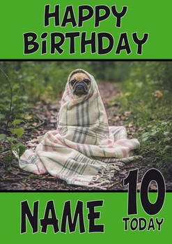 Baby Pug Wrapped Up Dogs And Puppies Happy Birthday Kirsten