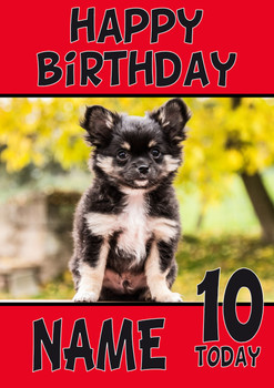 Black Chihuahua Puppy Dogs And Puppies Happy Birthday