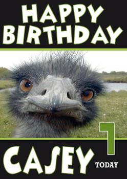 Emu Funny New Design 1 Birthday Card