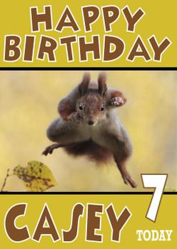 Flying Squirrell Funny Birthday Card