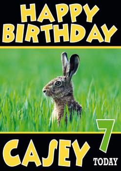 Rabbint In Tall Grass Funny Birthday Card