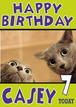 Shocked Kittens Funny Birthday Card