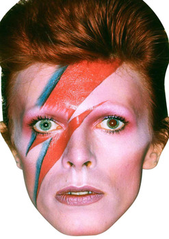 David Bowie 80s Celebrity Music Star Face Mask