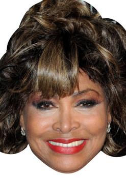 Tina Turner celebrity Party Face Fancy Dress