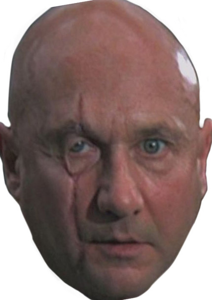Blofeld Celebrity Face Mask