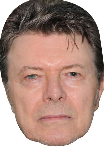 David Bowie celebrity Party Face Fancy Dress