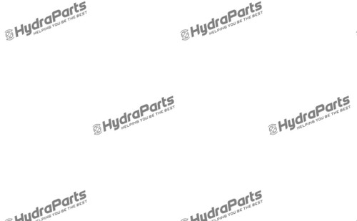 Internal Gear Pump Assembly R909606657