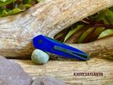 Protech Newport 3407 BLUE