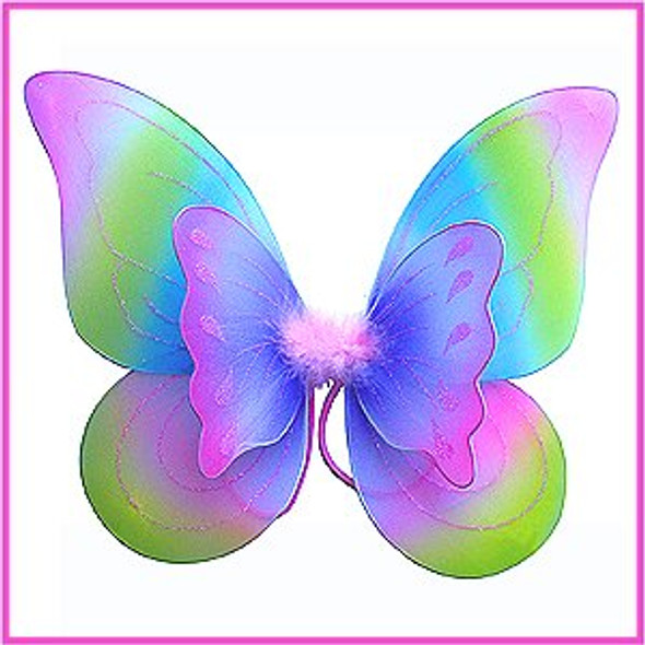 Rainbow Child Butterfly Wings 4634
