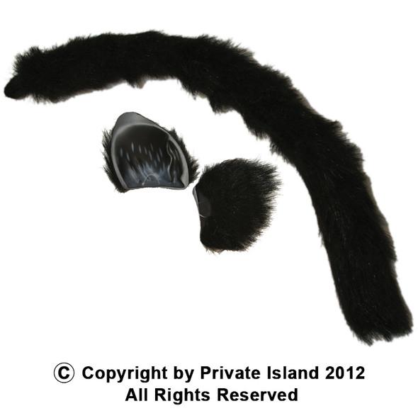 Cat Ears and Tail | Cat Headband | Set 1676
