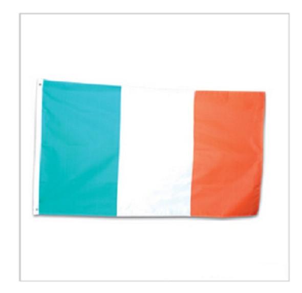 St Patricks Day Decorations | St Patricks Day Garden Flag | 12 PACK  9097D