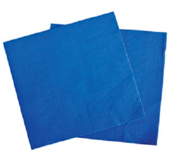 "Blue Party Napkins 10"" 20 Pack 3868"