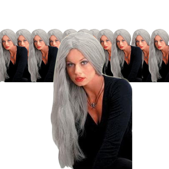Wicked Straight Wig Grey 24 Inch 12PK  6048D