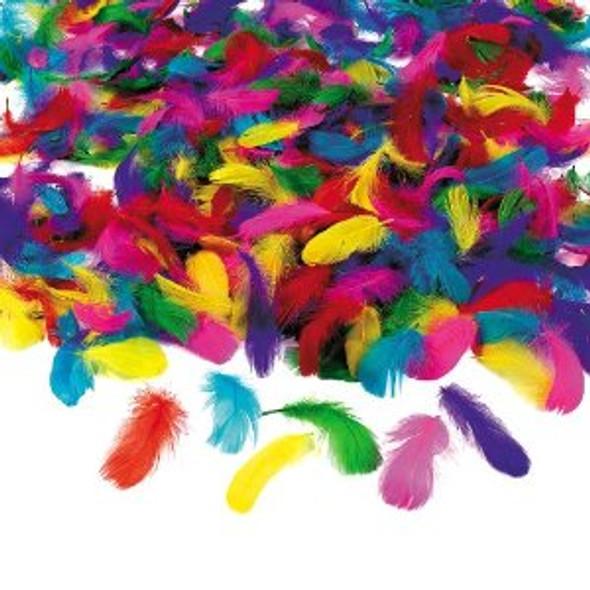 Feather Assortment Bulk Feathers Wholesale (600 pcs) 9261