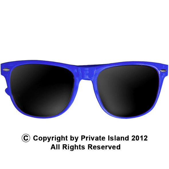 Royal Blue Vintage 80's Style Iconic Sunglasses Adult 12 PACK WS1076D