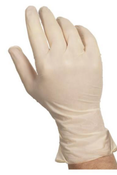Disposable Latex Gloves  | 100 PACK Powder Free SHIPS TODAY 15035
