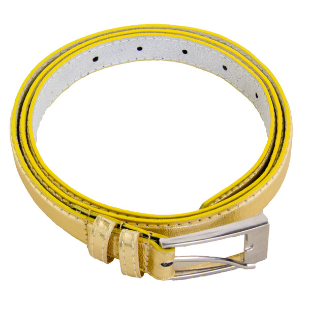 Gold Skinny Belt with Rectangle Buckle 2784-2787