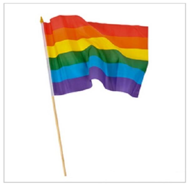 """12 PACK Wholesale Rainbow Gay Pride Flags 12"""" 9045"""