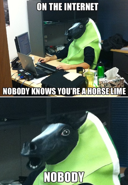 Horse Head Mask 9106
