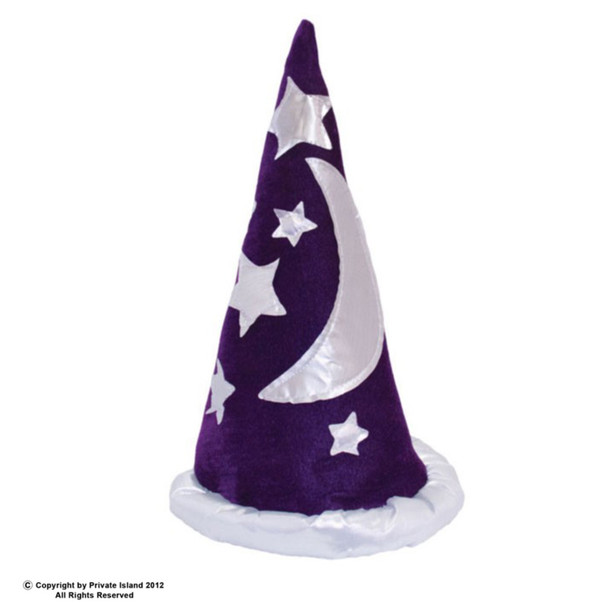 Wizard Hat Costume | Purple 12 PACK  WS1437D
