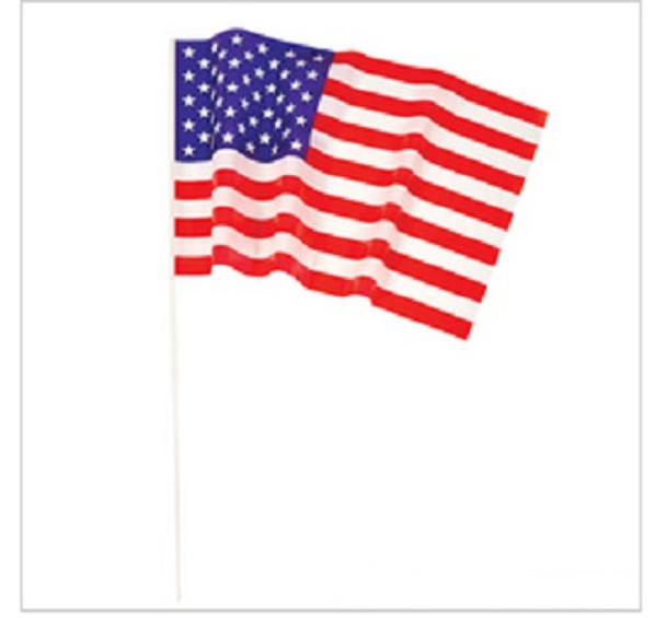 "12 PACK USA Pride Flags 12 x 18"" 9074D"