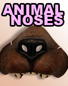 animal-noses-ca.png