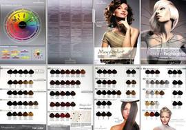 MagiColor Professional Permanent  Creme Color Chart