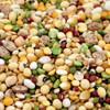 Tidymix Pulse & Rice Soaking Mix for Parrots 22.6kg