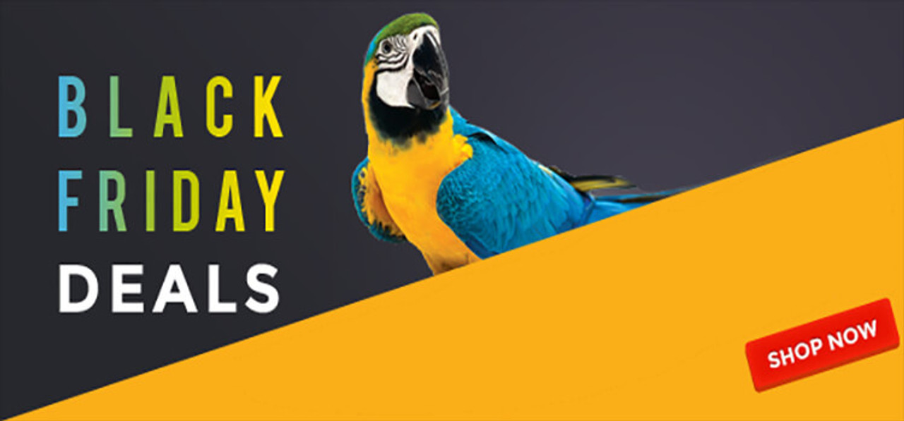 Parrot Essentials Black Friday and Cyber Monday Sale
