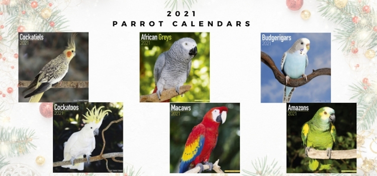 2021 Parrot Calendars for African Grey, Cockatiels, Budgerigars, Cockatoos, Macaws and Amazons Parrots