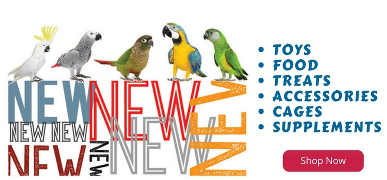 New Parrot Toys, Parrot Food, Parrot Treats, Parrot Cages
