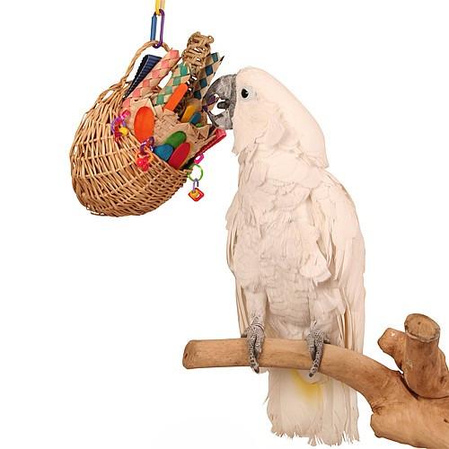 Fun Foraging Basket Parrot Toy
