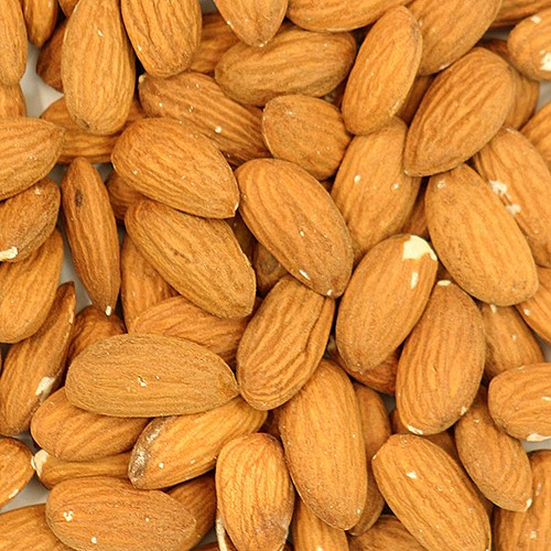 Human Grade Almond Parrot Treat - 100g